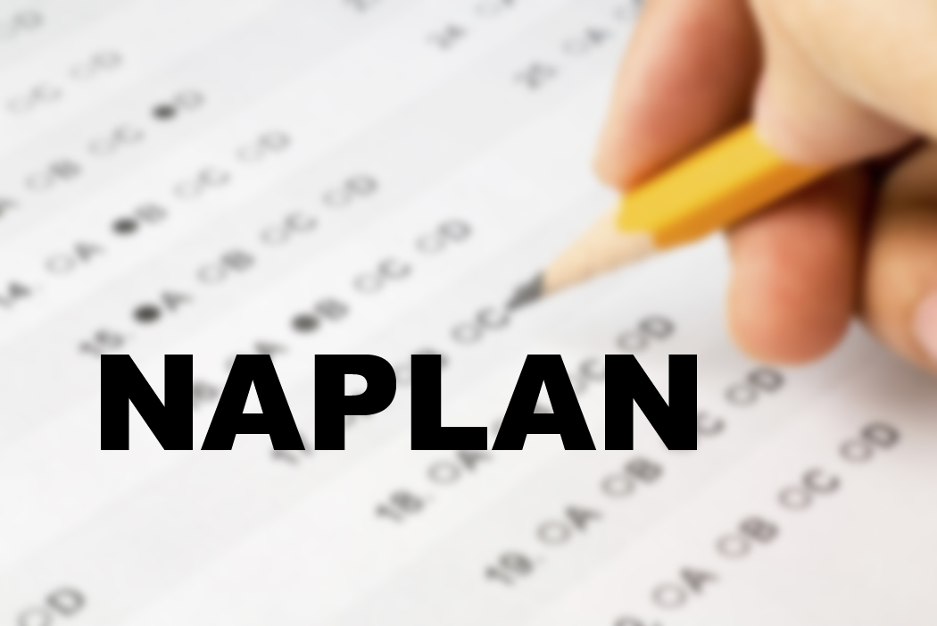 2017 NAPLAN results